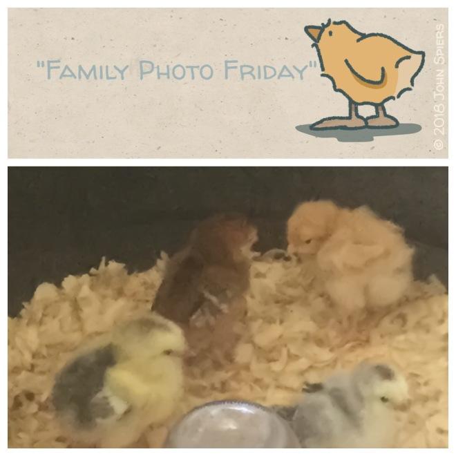 Family Photo Friday