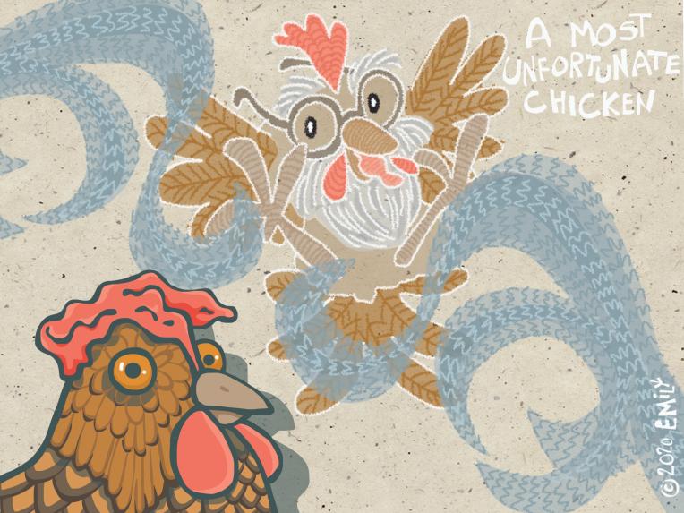 A Most Unfortunate Chicken